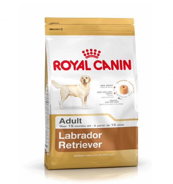 royal canin labrador adult